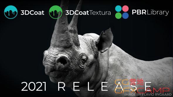 3D Coat 2021
